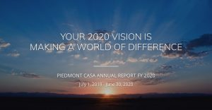 annual report fiscal year 2020